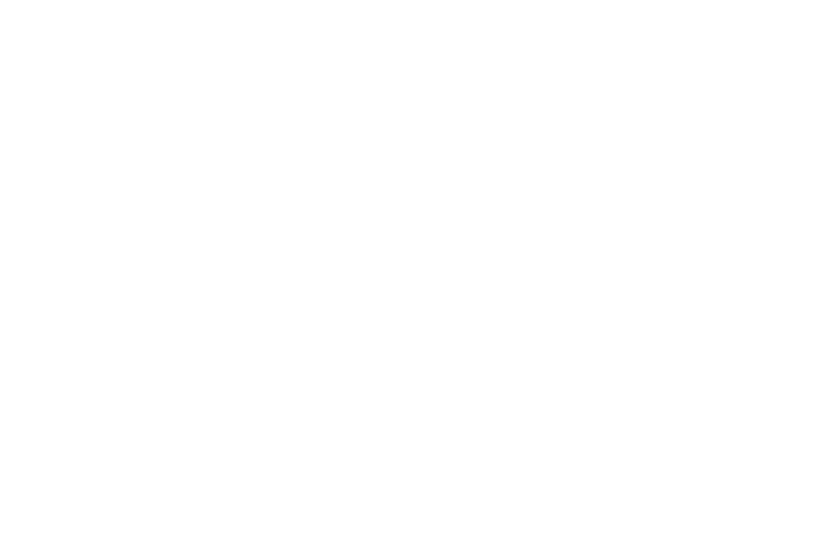 Distribuidora JOMI